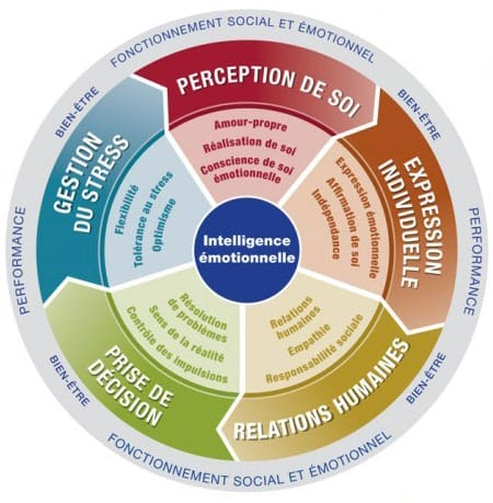 Certification EQ-i 2.0/EQ 360 – Intelligence émotionnelle